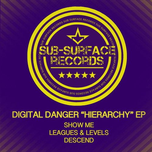 Digital Danger – Hierarchy [SSR04]